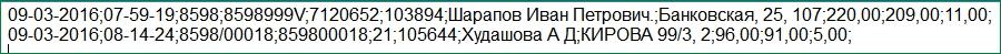 Файл из ПАО Сбербанк
